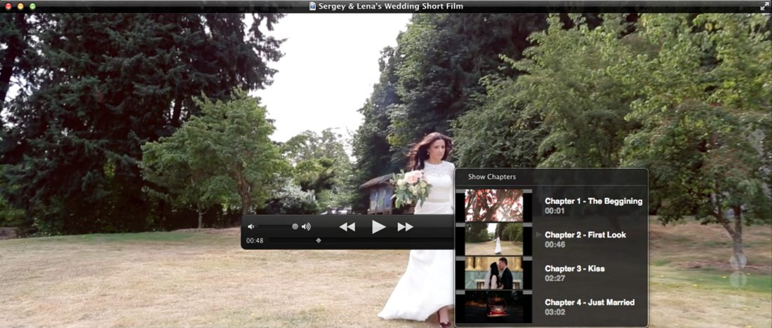 Chapters are available in Quicktime Player. Clicking on the chapter will allow you to jump to that time in the wedding film.