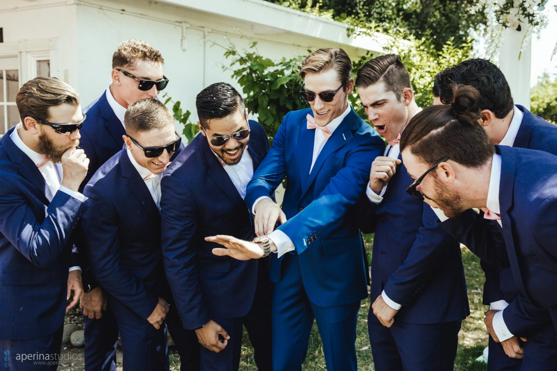 Grace Vineyards Winery Wedding Photographer - groomsmen and groom in navy blue tuxedo