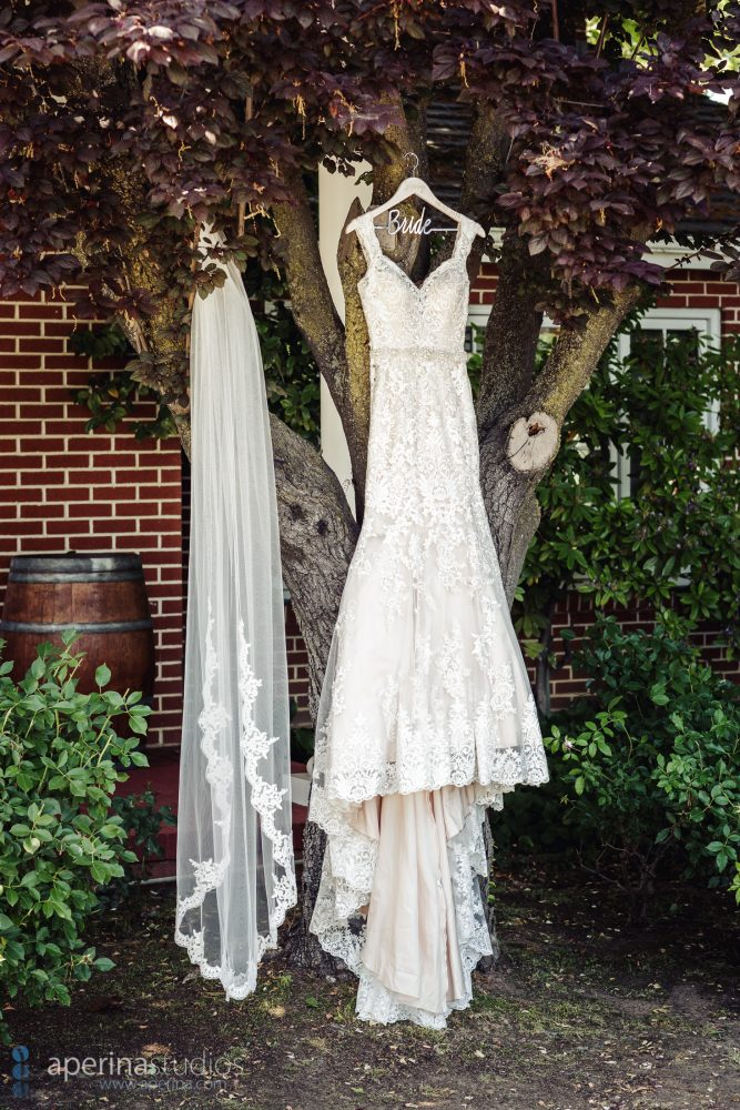 Grace Vineyards Winery Wedding Photos - Bridal White Modern Dress